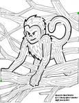Monkey Maze ahaha