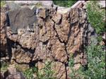 Quarry Park 6-21-05 -1-