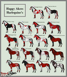 .:Happy Akers Harlequins Herd:.