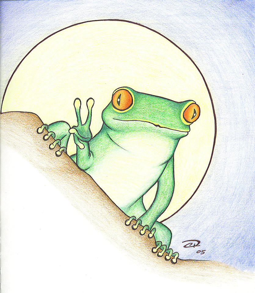 Tree Frog by Indylicious on DeviantArt
