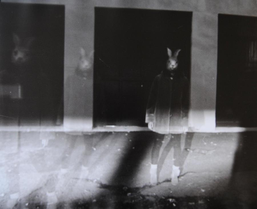 Three rabbits 2 by boisvemi