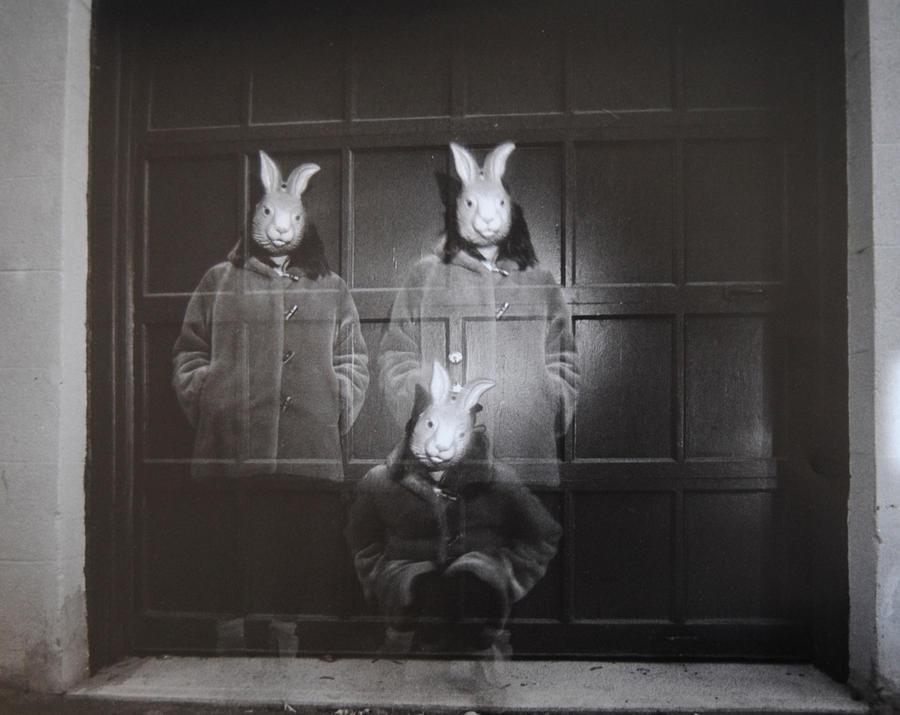 Three rabbits 1 by boisvemi