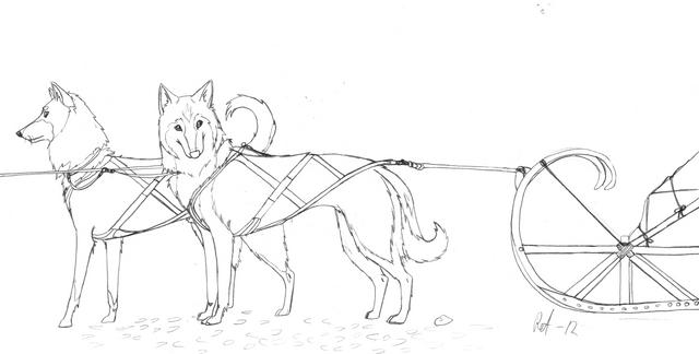 Rekikoirat - Sled Dogs by Belgiter