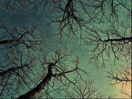 Walk Away From The Sun by ShadowsInMyEyes