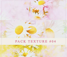 PACK TEXTURE #04