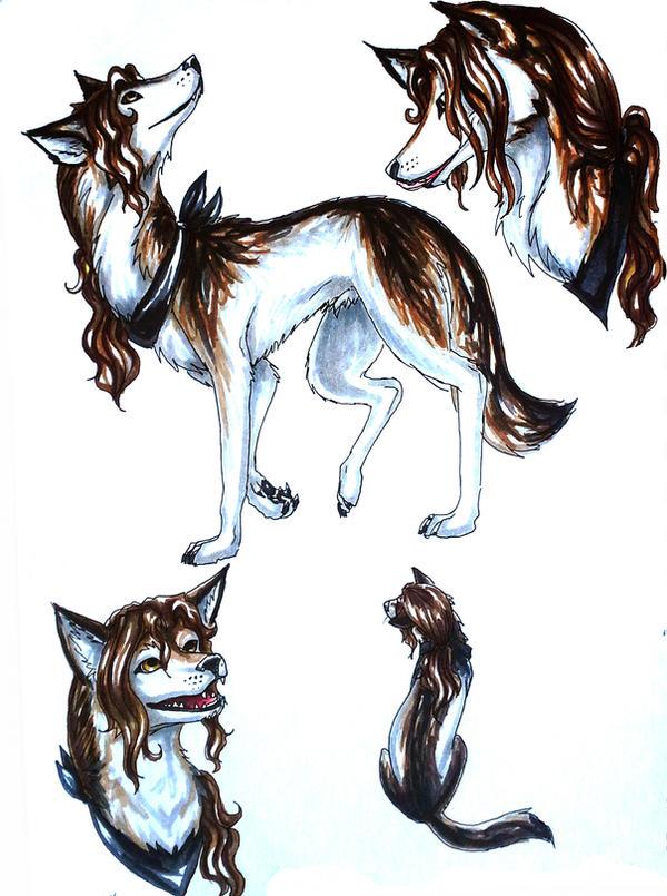 Mr.Artist: Wolf! by Kabudragon