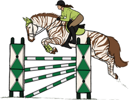 Jumping stripes by Rosenhill