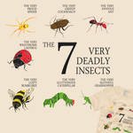 The 7 Deadly Insects