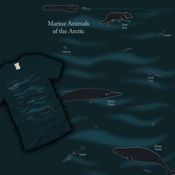 Marine Animals of the Arctic
