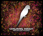 Exploding Parrot Productions
