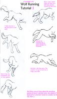 Wolf Run Tutorial by WolfsRainLuv22