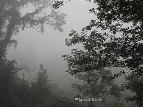 Hidden World by sweetp409