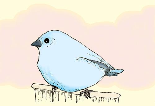 Bluebird by dancing-girl