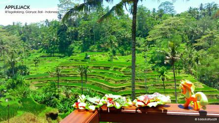 Enjoying the Green Views by EddoEditya28