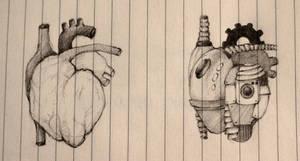 the heart by chat-de-gouttiere