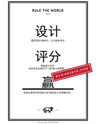Flyer (Chinese)