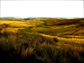 Moors and Grasslands by Ariane-C