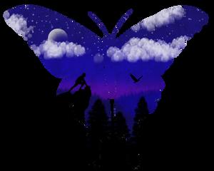 A Moth Dream