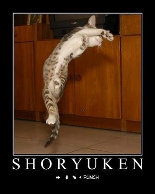 Shoryuken by Murosakiiro