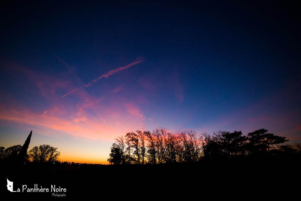 Nuit by trinan