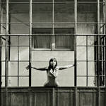 open cage by veftenie
