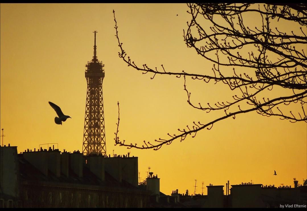 Paris sunset by veftenie