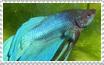 Betta Stamp by RogueLottie