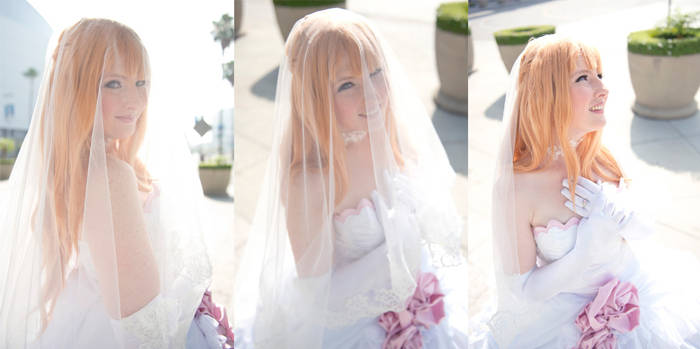 SAO - The Bride