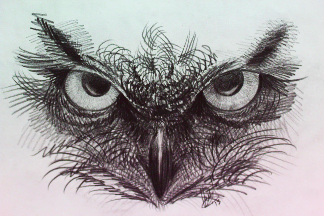 Image Result For Owl Tattoos