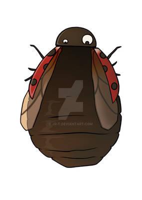 Fat Ladybug_shop edition