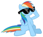 Rainbow Dash sunglasses vector by saksibouy