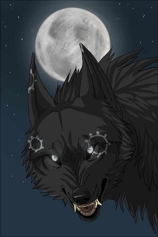 Dark Wolf by DakotaW-Wolf