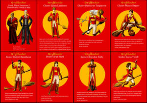 Gryffindor Asoiaf Quidditch 1