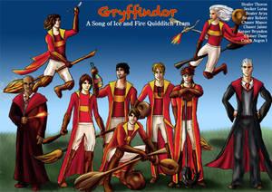 Gryffindor Asoiaf Quidditch 2