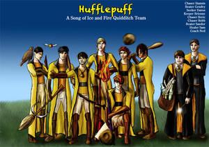 Hufflepuff Asoiaf Quidditch 2