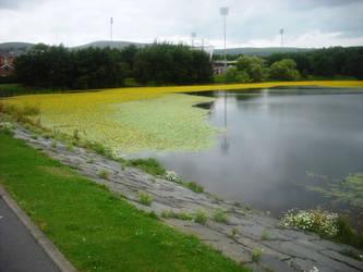 Yellow river (well, lake actually) by Keresaspa