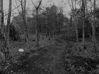 Path by Keresaspa