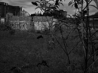 Wasteland 3 by Keresaspa