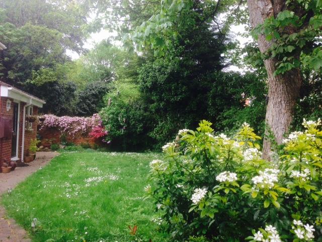 secret garden by chibiloverqueen