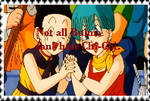 Not All Bulma Fans hate Chi-Chi