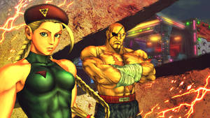 Sagat and Cammy in SFXT
