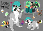(NEW) Spunky Racoon Fursona Reference Sheet