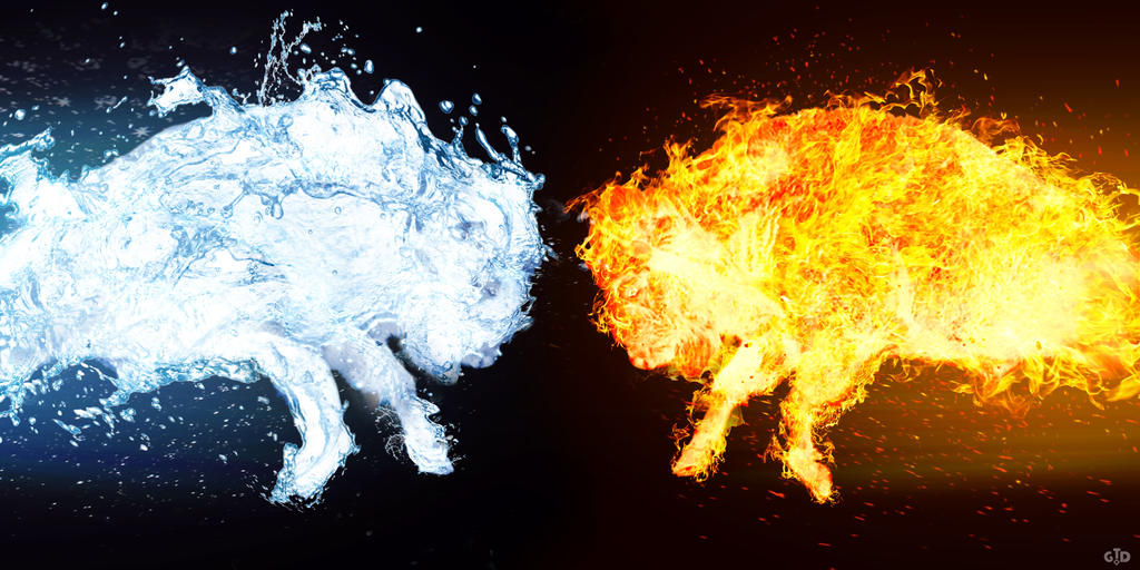 Bison Fire vs Water by Groltard on DeviantArt