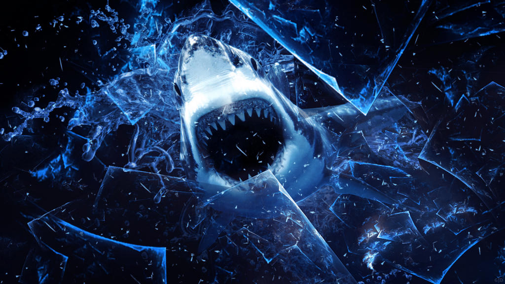 Shark wallpaper by Groltard