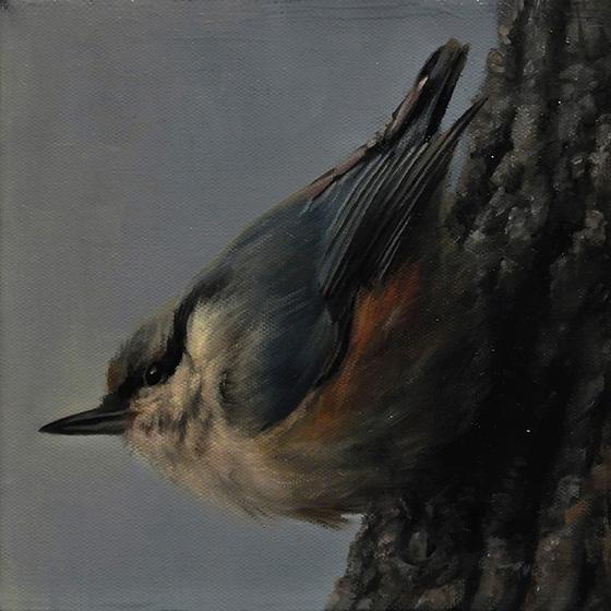 Bird 2 by trulsespedal