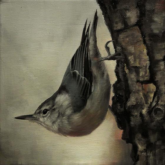 Bird 5 by trulsespedal