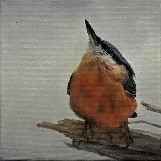 Bird 1 by trulsespedal