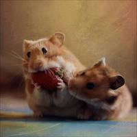 Greedy Hamster II