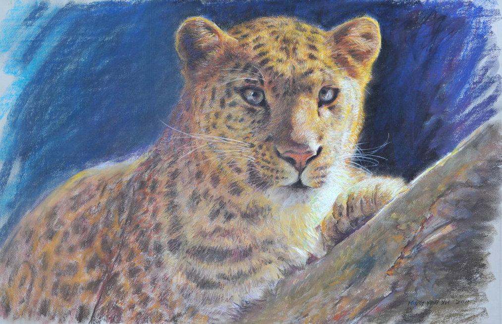 Cheetah by MingYou-Xu