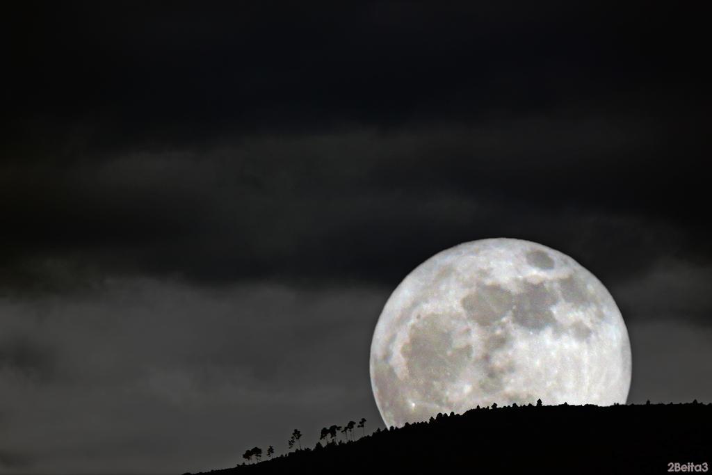Forest Moon by 2Beita3